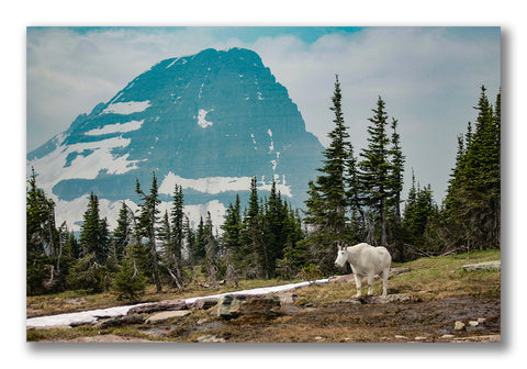Glacier National Park Edited