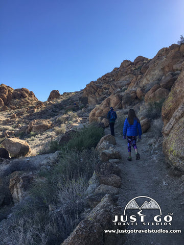 Hiking to the Fortynine Palms Oasis in Joshua Tree National Park