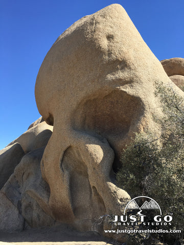Skull Rock in Joshua Tree National Park
