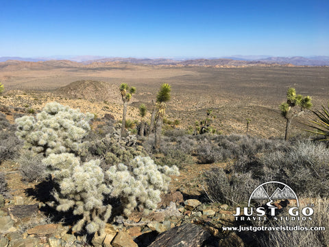A view from the top of the Ryan Mountain Trail in Joshua Tree National Park
