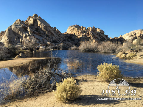 Barker Dam Trail in Joshua Tree National Park