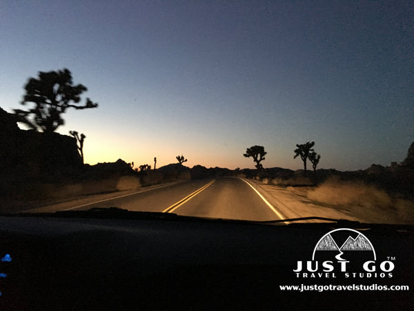 driving out of Joshua Tree National Park at night