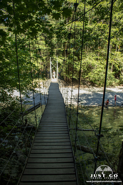 Suspension bridge in the grove of the Patriarchs Trail