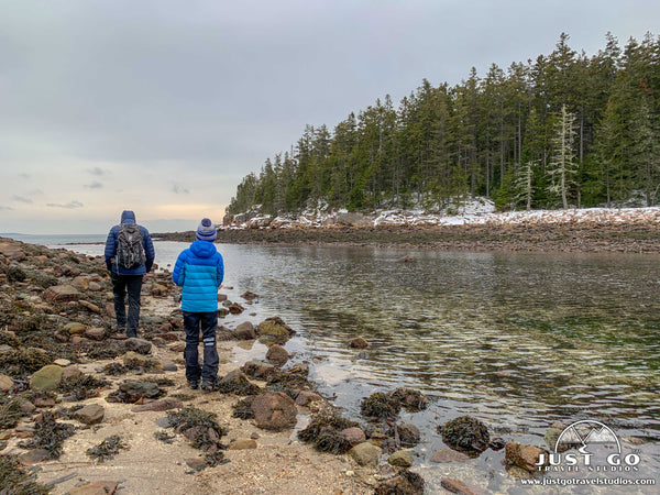 Ship Harbor Trail in Acadia National Park