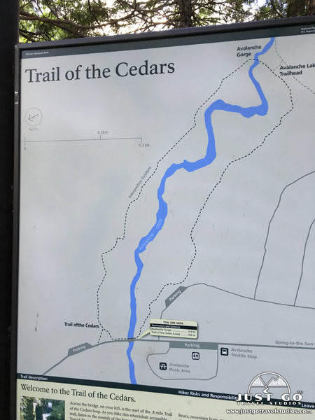 Trail of the Cedars Map