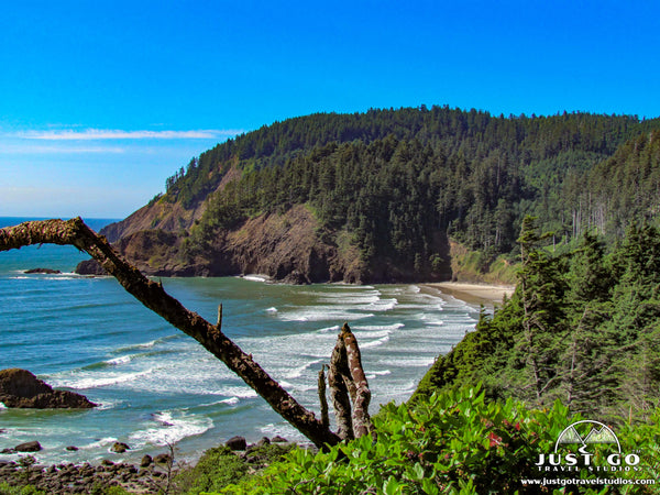 Ecola state park overlook