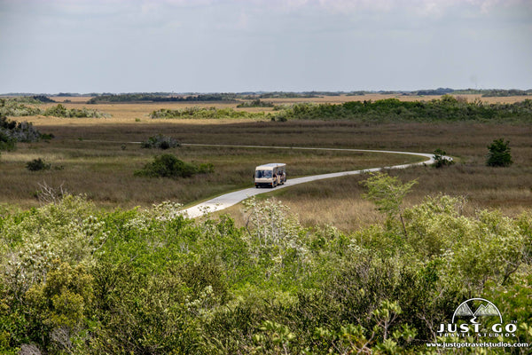Tram tours in Shark Valley in Everglades National Park