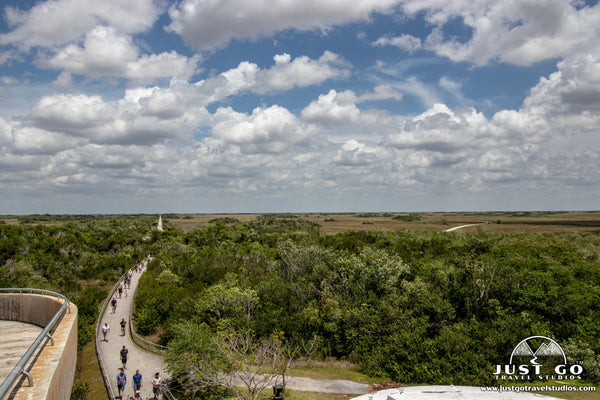 crowds at the tower in shark valley in Everglades National Park