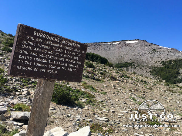 Information on hiking in the Sunrise Area of Mount Rainier National Park