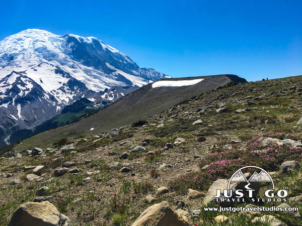 Mount Rainier from the Sunrise Trail