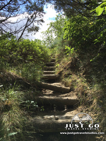 Steps in Theodore Roosevelt National Park - Caprock Coulee Trail
