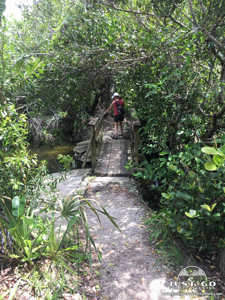 Borrow Pit trail in Shark Valley in Everglades National Park