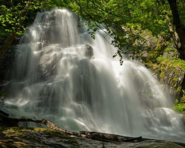 Jones Falls in Shenandoah National Park