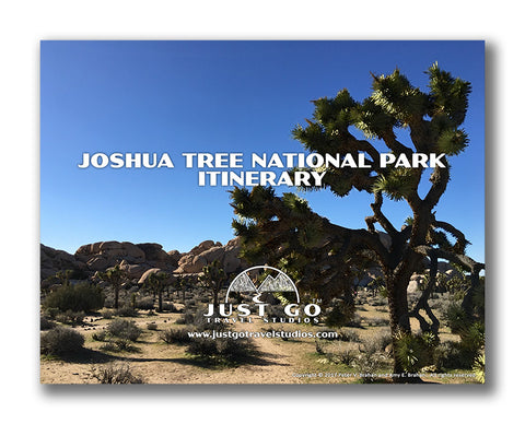 Joshua Tree National Park Itinerary from Just Go Travel Studios