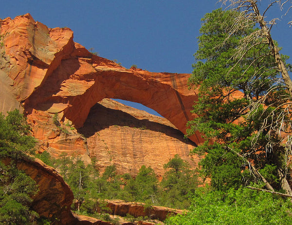 Kolob Arch in Kolob Canyons in Zion National Park