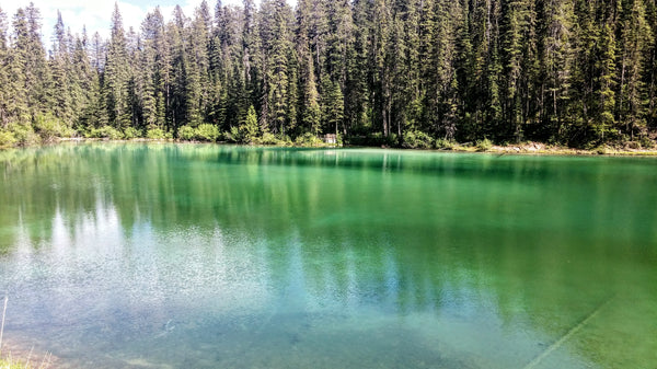 Olive Lake, Kootenay National Park