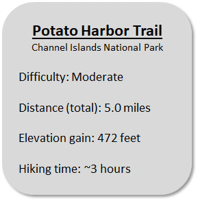 Potato Harbor Trail Information in Channel Islands National Park
