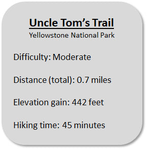 Uncle Tom's Trail Information in Yellowstone National Park