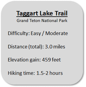 Taggart Lake Trail Information in Grand Teton National Park