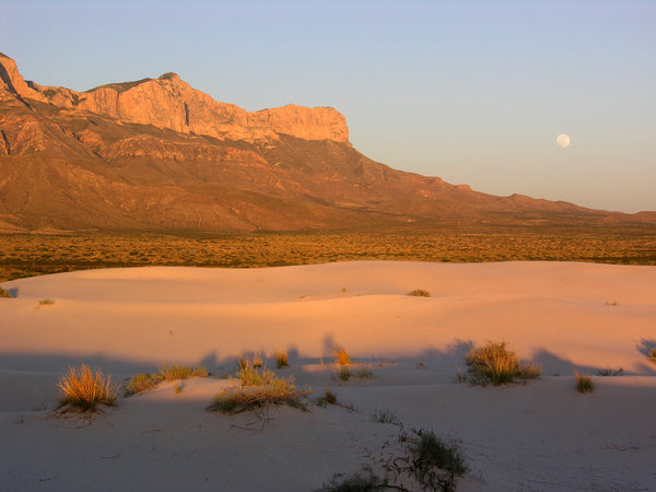 Dunes area in Guadalupe Mountains National Park
