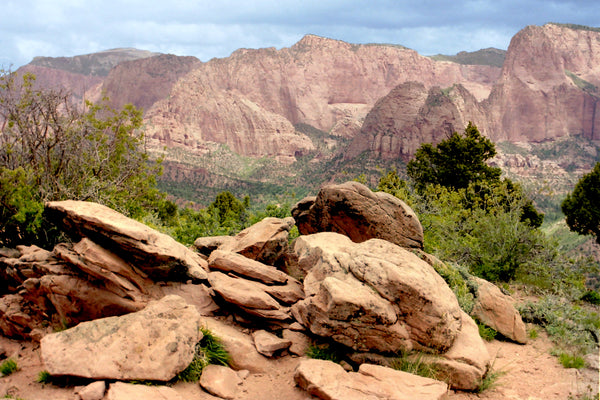 Timber creek overlook in Kolob Canyons in Zion National Park