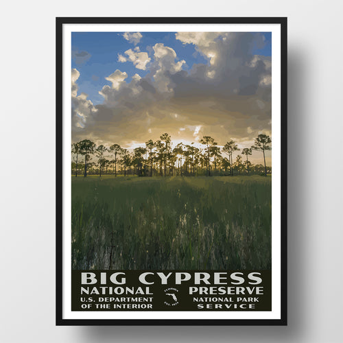 Big Cypress National Preserve poster