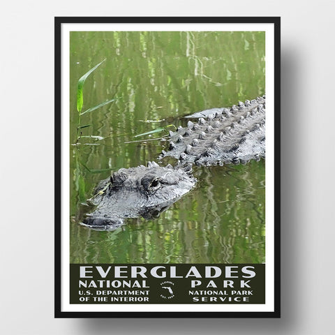 Everglades National Park Poster-WPA (Alligator)