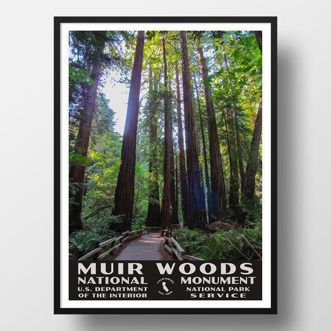 Muir woods national monument poster wpa style