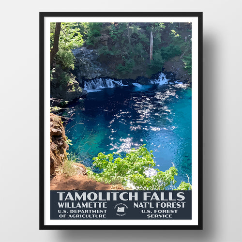Tamolitch Falls Willamette National Forest Poster