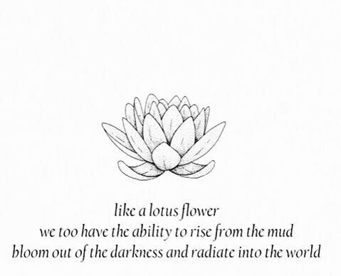 Lotus flower crystal clip lakota inspirations we offer worldwide delivery and nationwide delivery within south africa mightylinksfo