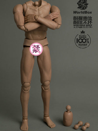 In-Stock 1/6 Scale AT025 Durable WorldBOX Male 12in Body Military BW/O Neck