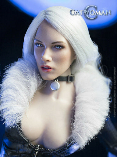 Pre-order  1/6 Scale VERYCOOL VCL-1001 Black Cat Custom Kit (No Body)
