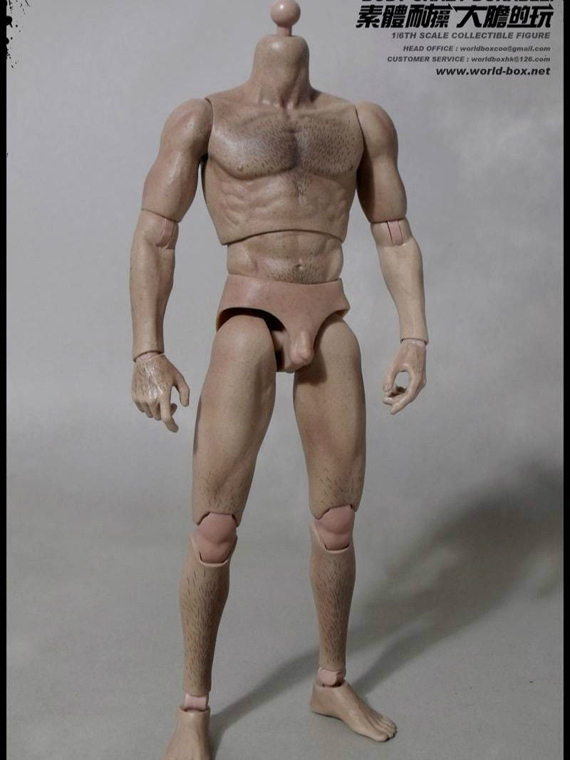 1/6 Scale Worldbox AT008 Hairy Body Crazy Durable 12 inch