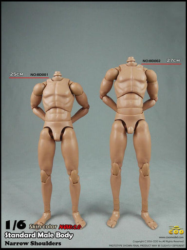 BD009 1//6 Coomodel Action Figure Accessory Action Figure Muscle Male Body No