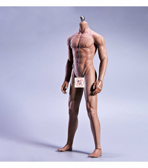 In-stock 1/6 JIAOU DOLL Seamless Male Body 11C Muscular Series