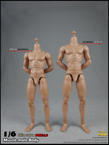 1/6 COOMODEL BD003 BD004 Musclar body 2.0 Male with NECK