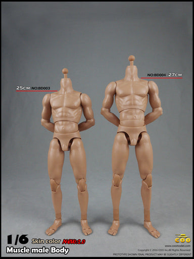 1/6 COOMODEL BD003 BD004 Muscular body 2.0 Male with NECK