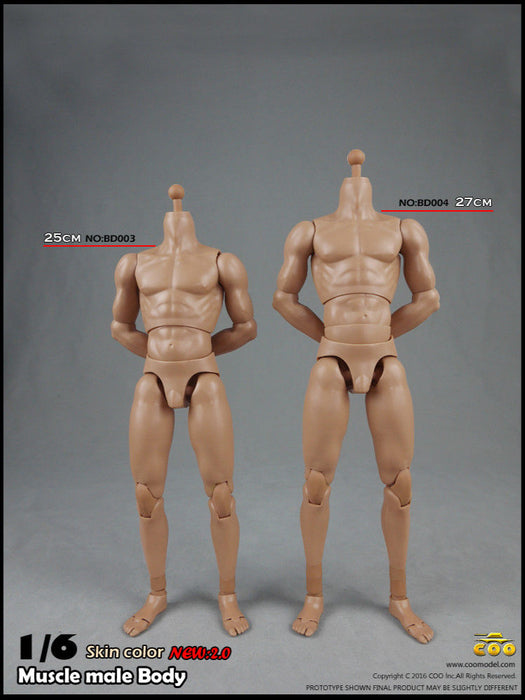 COOMODEL 1:6 BD004 Muscular PVC 12/'/' Male Action Figure Body Collectible Toys