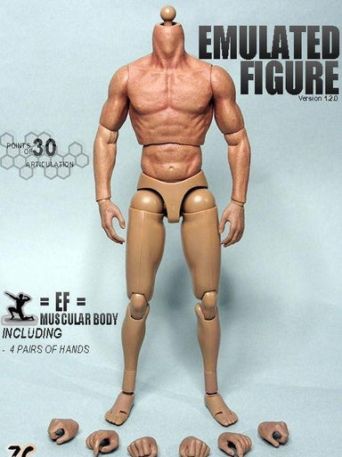 "1/6 Scale ZC Toys 12"" Muscular Figure 2.0 Body"