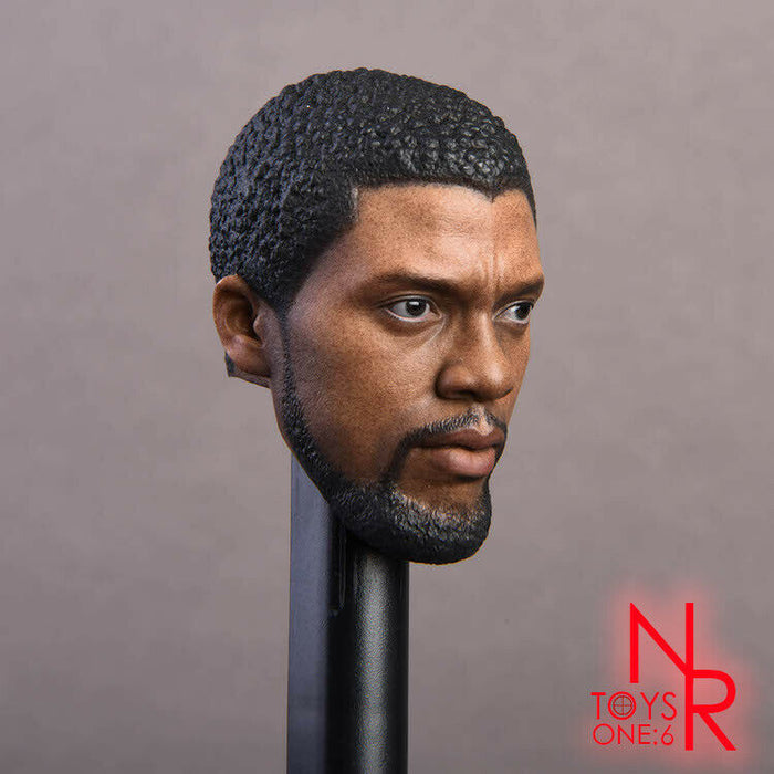 In-Stock 1/6 Scale NRTOYS NR15 Black Panther Head Sculpt HW/O Neck