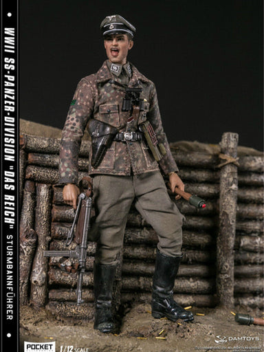 In-Stock 1/12 Scale DAMTOYS WWII SS-Panzer-Division PES003 6in Action Figure
