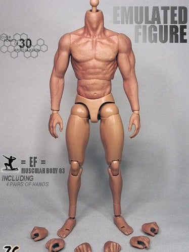 In-Stock 1//6 Scale Male Body With Neck ZY B005 Muscular Enhanced BW//Neck