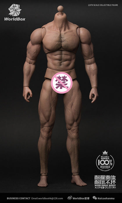 In-Stock Worldbox AT027 1/6 Scale Durable bady-ripped Body 12in Action Figure