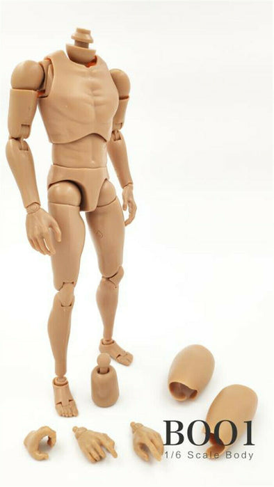 In-stock 1/6 Scale ZYTOYS Male 12in Action Figure Body Collection (W/O Neck)