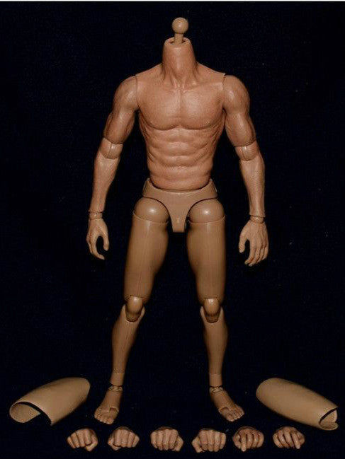 ZC Toys 1/6 Scale Asian Muscle Body S005 For Bruce Lee