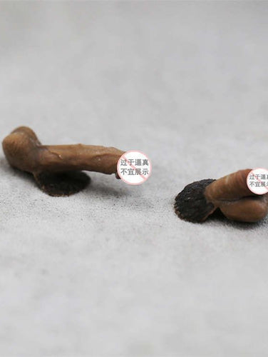 2 PCS 1/6 Scale Male Genital Organ Penis For Phicen Male Body In Stock