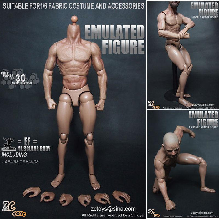 1/6 ZC Toys Male Body Collection