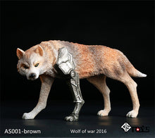 In-Stock Devil Toys 1/6 Scale WOO Wraith - The War Wolf_ Brown Box Set _War of Order B