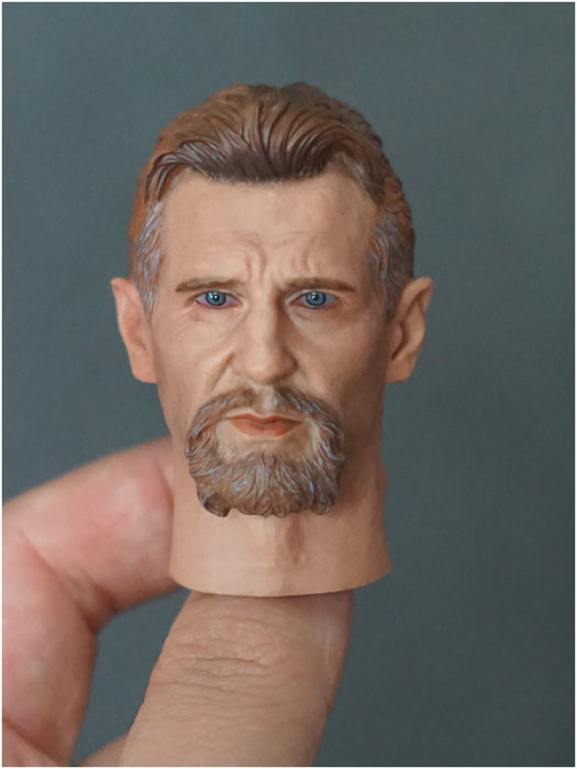 In-stock YTSTOYS TYDT05 1//6 Ninja Master Liam Neeson Batman Head Sculpt