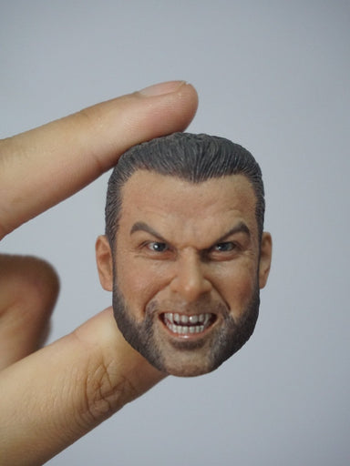 Pre-order 1/6 Head Sculpt for Sabretooth Tiger (X-men Origins: Mr. Wolf)